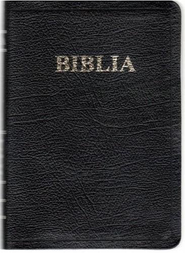 Biblie mijlocie neagra de lux + margini AURII