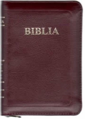 Biblie mijlocie visinie de lux